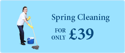 Professional Spring Cleaning for only £39